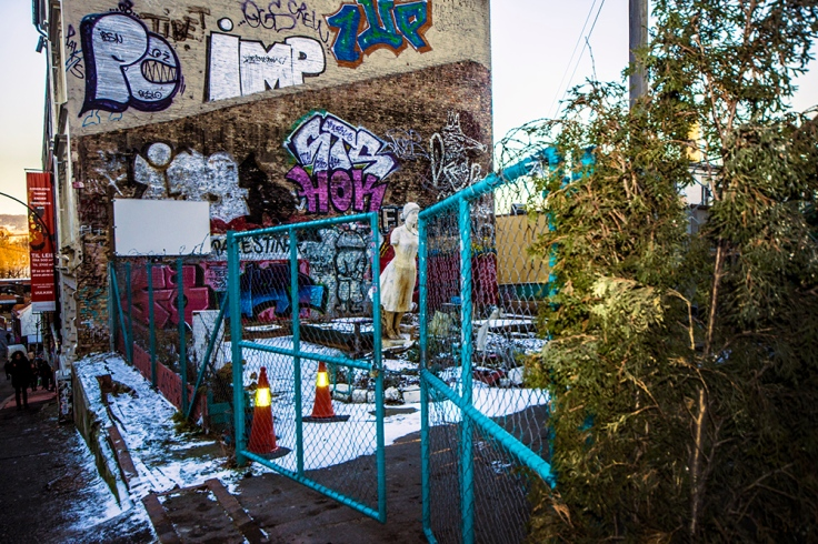 Hausmania Backyard