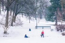children winter sliding a st hanshaugen park in oslo