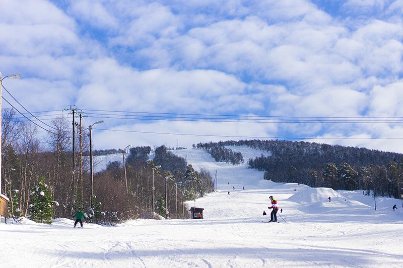 ski area - snowy hill