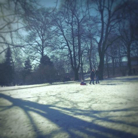 sledging - St. Hanshaugen park - Oslo, mars 2013