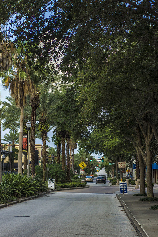 Street in St Pee, Florida