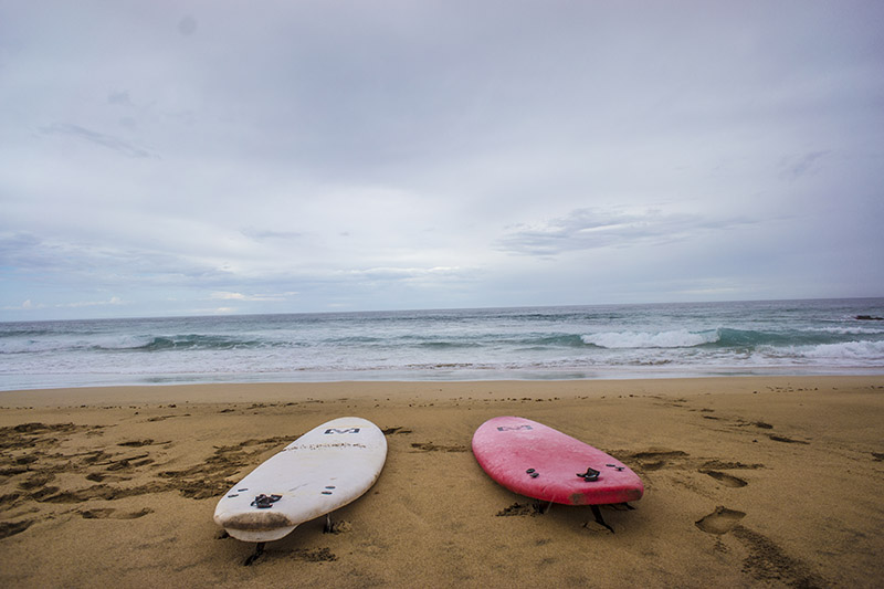 surfing boards and ocean