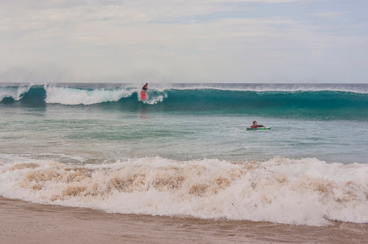 surfing on th fuerteventura waves