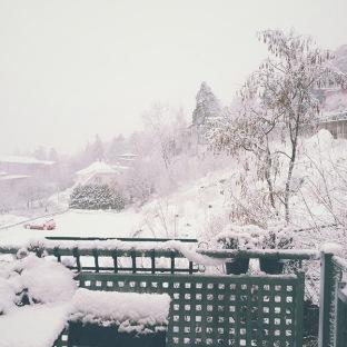 winter's back