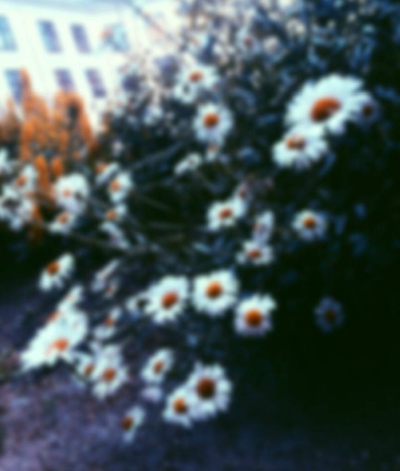summer blur