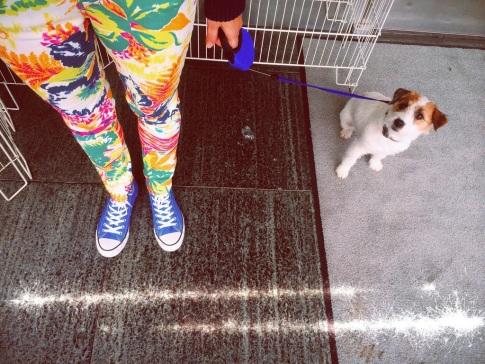 Milli & fashion pants // summer of Milli