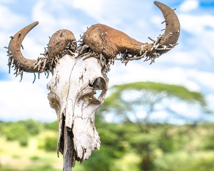 Kenya 2018
